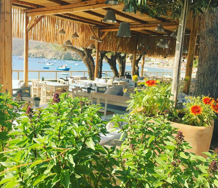 Morning view of Seasalt & Rosemary  Restaurant!  Www.capsis.com