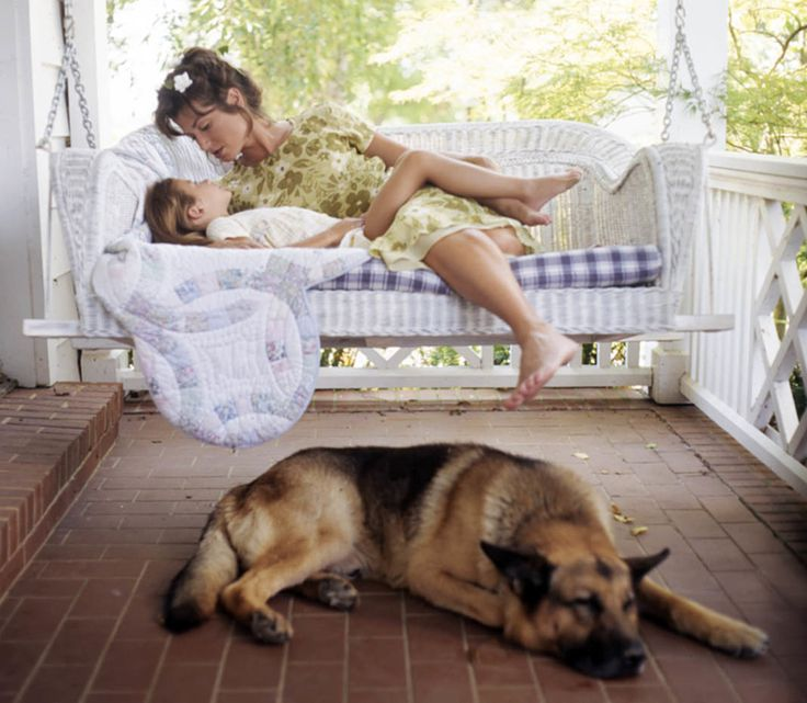Amy Grant & her GSD