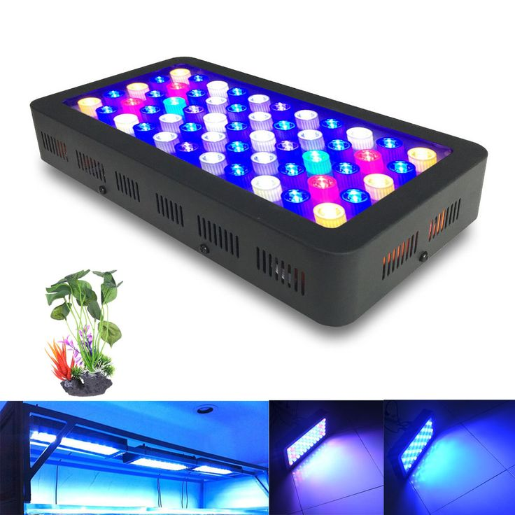 ==> [Free Shipping] Buy Best Dimmable 110w Full spectrum led aquarium lamp for coral reef aquarium led lighting best for Fish tanks Marine plants Growth Online with LOWEST Price | 32807775005