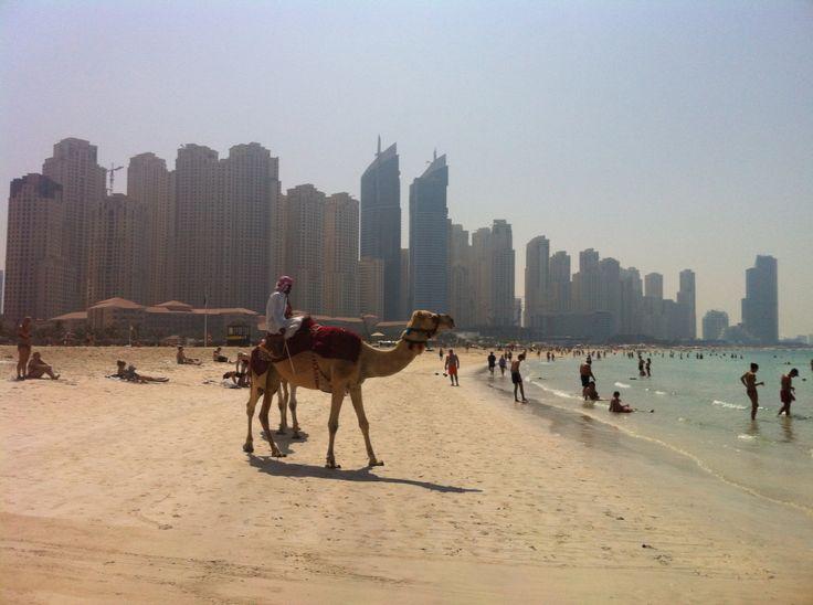Lovely Dubai!