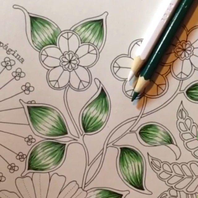 #combinandocoresJSI de hoje!! Simples, fácil de fazer e lindo!!!! Apenas duas cores, e esse jeitinho de colorir! VERDE ESCURO➕BRANCO quero colorir tudo desse jeito! Vogue-Madona Usei lápis de cor AQUARELÁVEL ☺️❤️ --------------------------------------------------- #⃣ Use #jardimsecretoinspire para que seu colorido seja compartilhado aqui no nosso perfil!! ➡️ Envie por Direct também as suas fotos!! #jardimsecretoinspire #jardimsecreto #livrojardimsecreto #secretgarden #amamo...