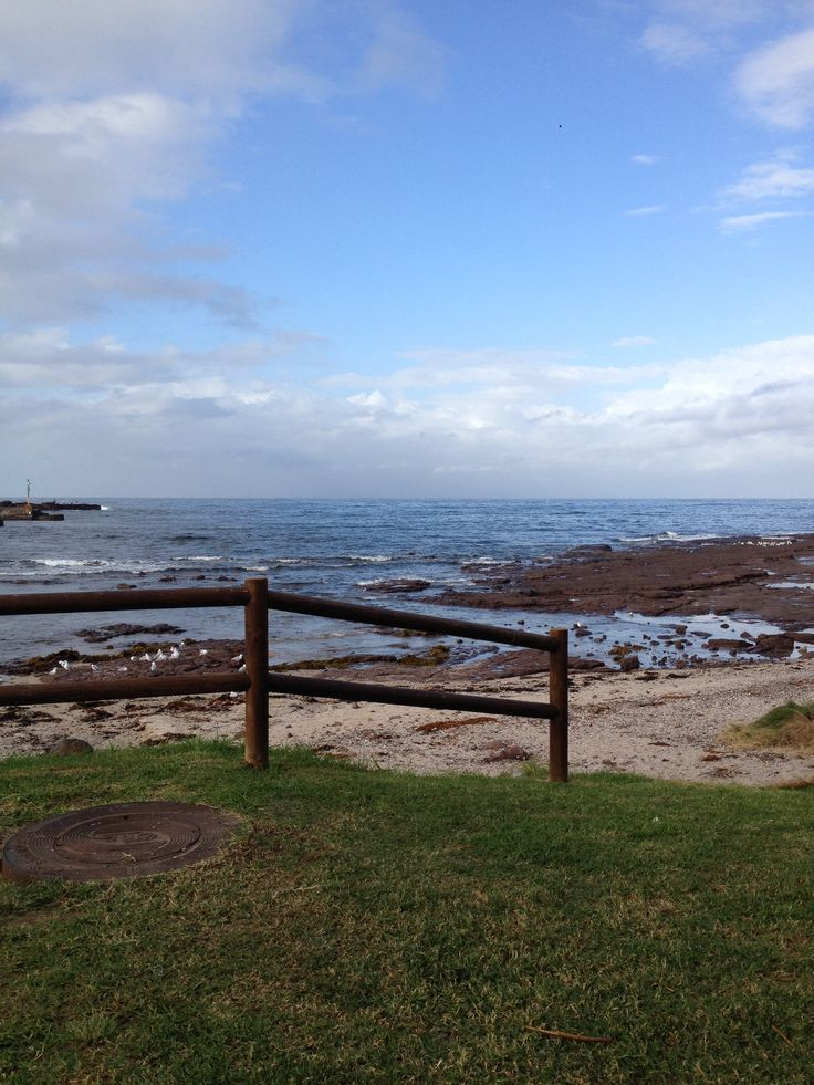 Shell Harbour nsw