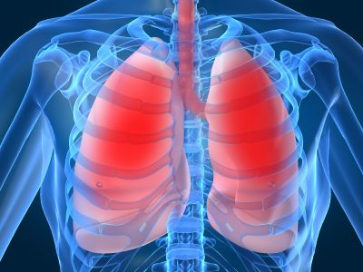 Proposed Natural Treatments for Chronic Obstructive Pulmonary Disease