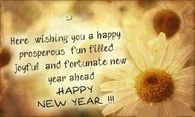 Here Wishing You A Happy Prosperous Fun Filled Joyful And Fortunate New Year Ahead, Happy New Year