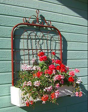 "Flower ""bed"""