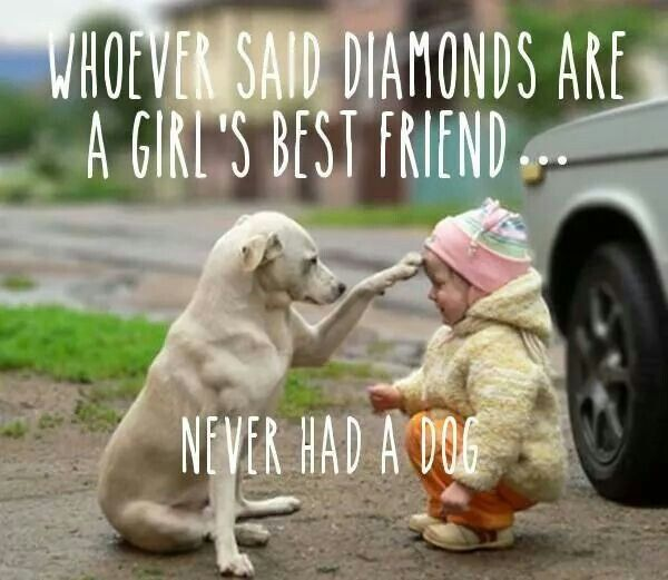 WHOEVER SAID DIAMONDS ARE A GIRL'S BEST FRIEND . . . NEVER HAD A DOG