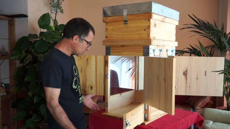 Arnia Perone Modificada che si apre sui lati - di Francisco Méndez #api #apicoltura #miele #apicoltori #permapicoltura #arnie #modelli #alveare