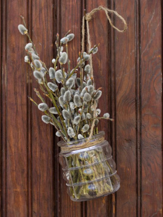 Pussy Willow in Vase , Pussy Willow Twig Arrangement , Pussywillow in Hanging Vase , Bundled Pussywillow , Rustic Pussy Willow Decor