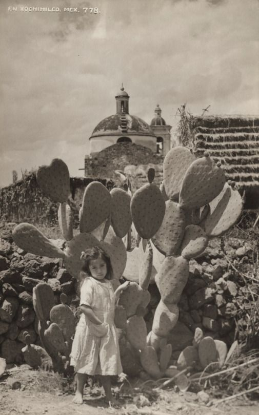 Imagen de la región rural de Xochimilco, en la parte sur de la Ciudad de México.  Ca. 1920