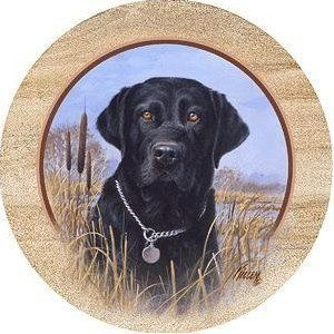Set of 4 Sandstone Coasters - Killen's Black Lab by Thirstystone. $22.99. Ultra Absorbent. Cork Backing to Protect Your Furniture. Will Last and Absorb for Years. Set of 4 Natural Sandstone Coasters. Made in the U.S.A.. Thirstystone quarries their sandstone for the Coasters in the Southwestern United States using the most environmentally conscious methods to extract the sandstone boulders that will be crafted into Thirstystone coasters. Thirstystone Sandstone Coasters are amon...