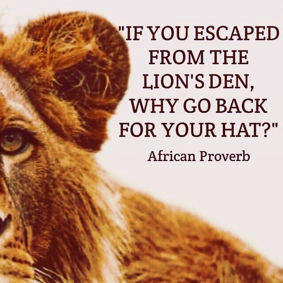 If you escaped from the lion's den, why go back for your hat? African proverb