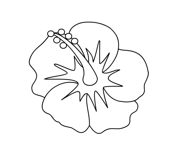 Hibiscus Coloring Page State Flower Embroidery Hibiscus Coloring Page