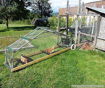 Guide de construction d'un tracteur à poules - Plan Gratuit de tracteur à poules