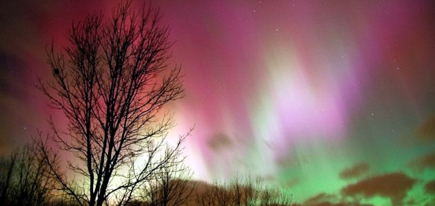 Gaze at the Northern Lights - Natural Vistas Category (Photo: Constance McGuire, iStockphoto)