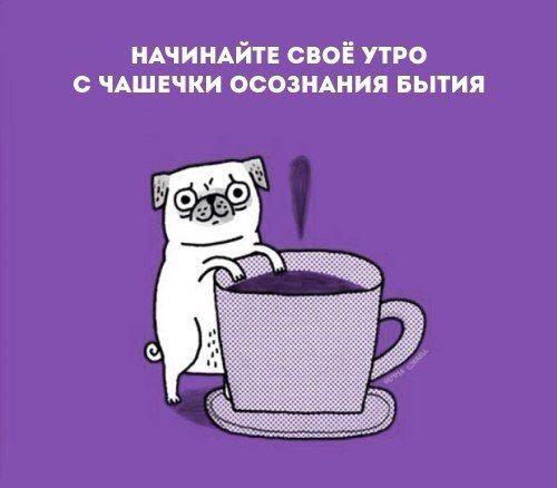 #картинки #юмор #смешно #смех #firstgameclub #кофе #осознанность #утро