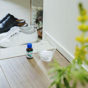omotenashi__MG_2951本番A550×550 はっか油とは、和種のはっか(ミント)の茎や葉から採られた精油のこと。薬局に行けば、20㎖の瓶が700円くらいで買えます。 このはっか油に含まれるメントールに、消臭や抗菌など、さまざまな効果があるのだそうです。 うつわに粗塩を少し盛って、その上にはっか油を10滴ほど垂らして。玄関に置いておけば、消臭・抗菌効果だけでなく、さわやかな香りでゲストをお出迎えできますよ」