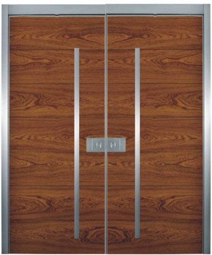 1000 images about doors on pinterest front door design for Modern front double door designs