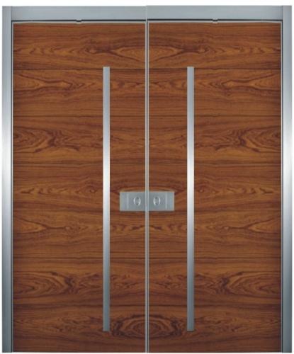 1000 images about doors on pinterest front door design for Modern front double door designs
