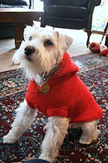 Dog Hoodie knitting pattern via Ravelry
