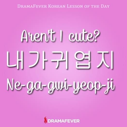 how to learn korean in 1 day