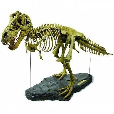 Animals and Nature 31744: Geoworld T-Rex - Skeleton -> BUY IT NOW ONLY: $58.3 on eBay!
