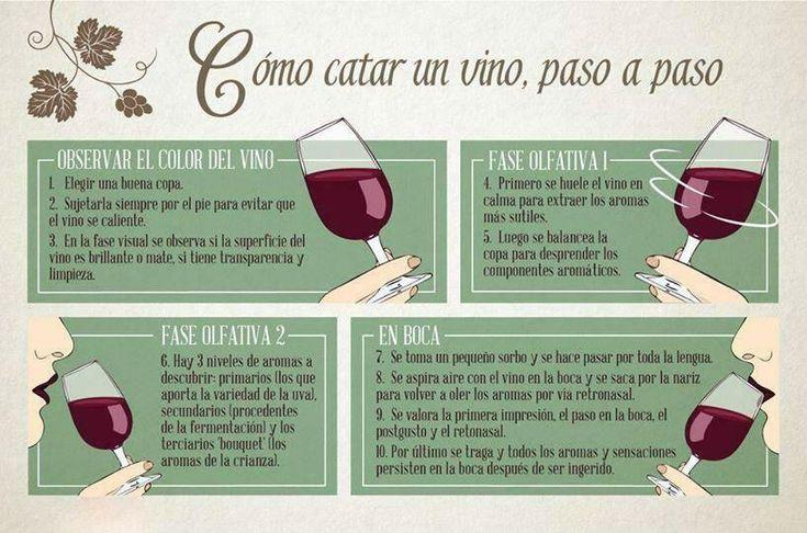 ¿Sabes hacerlo correctamente?  #cata #wine #rioja