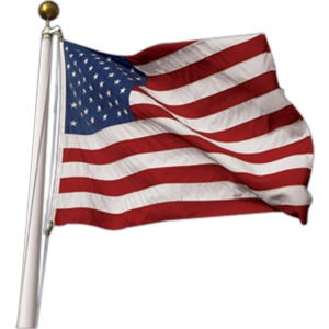 when did flag day become a national holaday