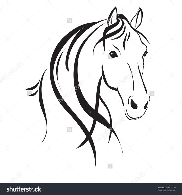 Line drawing of a horse's head on a white background - stock vector
