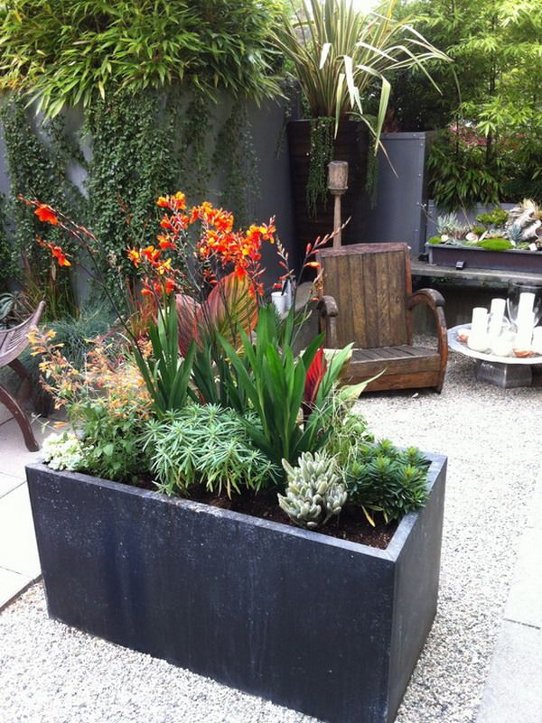 1250 best container gardening images on pinterest | pots, flowers ... - Patio Planters Ideas