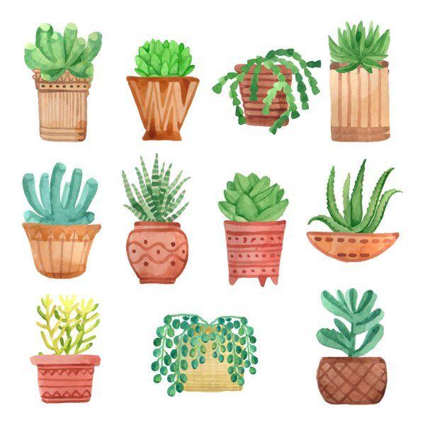 Vectores De Stock De Planta Ilustraciones De Planta Sin Royalties Pagina 4 Depositphotos En 2020 Dibujos De Macetas Cactus Dibujo Significado De Las Flores