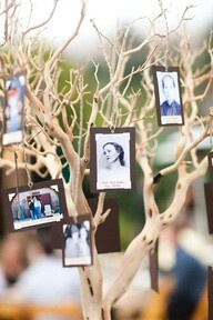 To create a custom DIY photo centerpiece for your graduation party, you just need some branches, cute pottery, and accenting florals. Come into Jamie's for more centerpiece ideas.