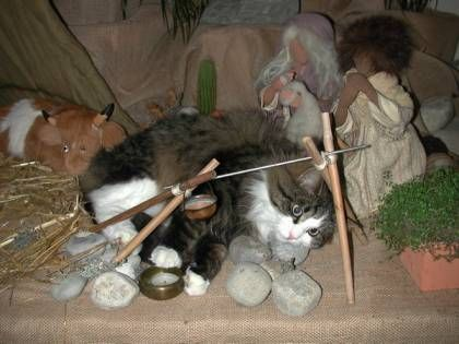 There's an old Christmas legend involving a tabby cat who Mary and Joseph befriended on the night Jesus was born which may explain why you see tiny figurines of cats in nativity scenes. As the legend goes (or so our cat tells us), Mary was so grateful to the little barn cat for watching over Baby J...