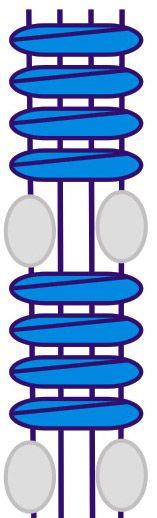 Витая цепочка с бисером на рабочих нитях - Узоры - Изделия и узоры - Макрамеха