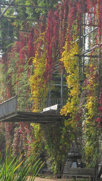 MFO Park Zurich
