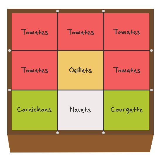 Il est important de préparer ses cultures pour optimiser la production d'un potager en carré. Voici le planning de mon carré qui accueillera les tomates.
