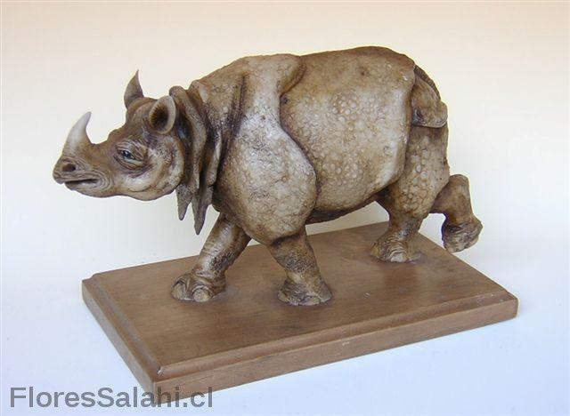 Rinoceronte indio. | Flores Salahi