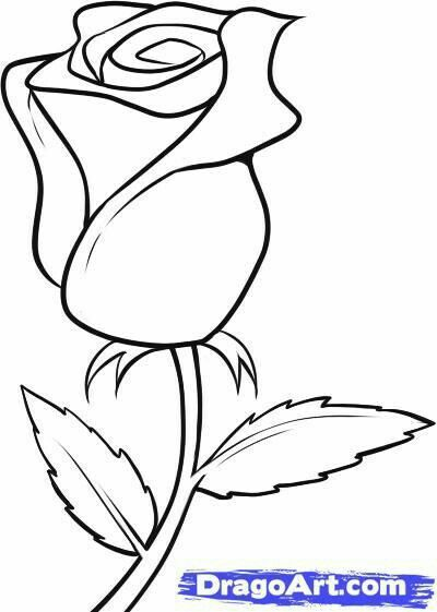 Pin By Mary Oracle On Art Rose Drawing Simple Roses Drawing Flower Drawing