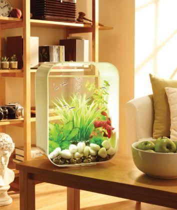 """biOrb """"LIFE"""" LED Light, 20 L, White - All About Betta Fish Tanks - #beautiful #betta #fish #tanks #aquarium"""