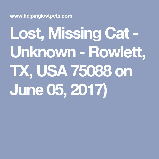 Lost, Missing Cat - Unknown - Rowlett, TX, USA 75088 on June 05, 2017)