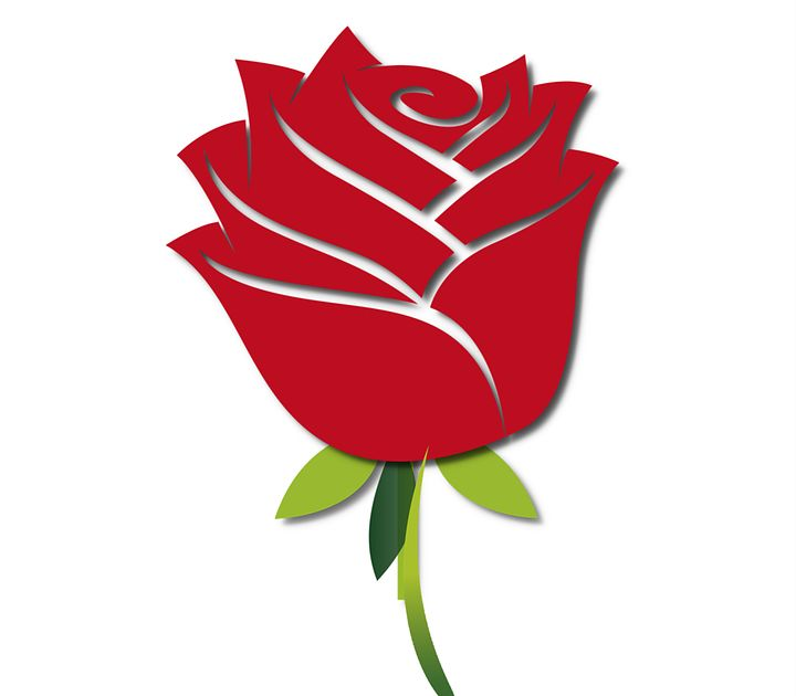Paling Bagus 17 Gratis Grafik Gambar Bunga Mawar Animasi Temukan Gambar Mawar Merah Gratis Untuk K Rose Flower Png Hd Flower Wallpaper Rose Flower Wallpaper