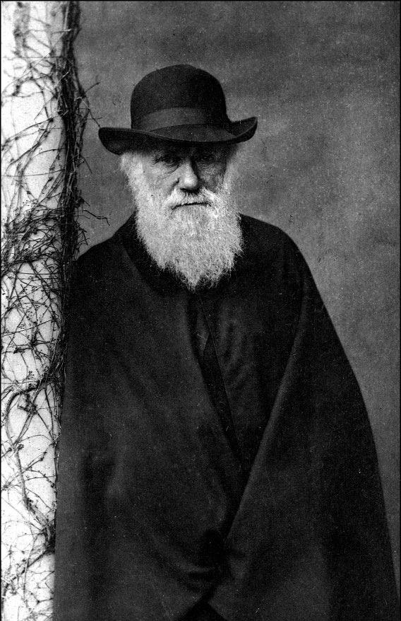 Charles Robert Darwin (1882). English naturalist.