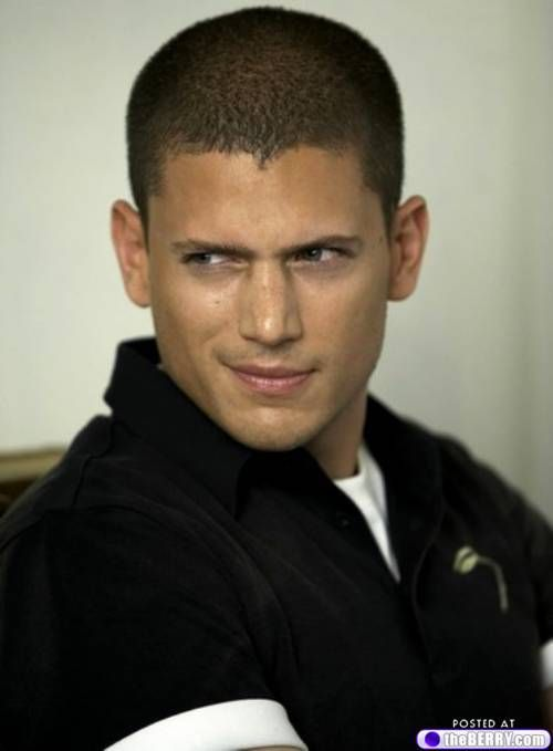 eye candy wentworth miller 7 Afternoon eye candy: Wentworth Miller (21 photos)