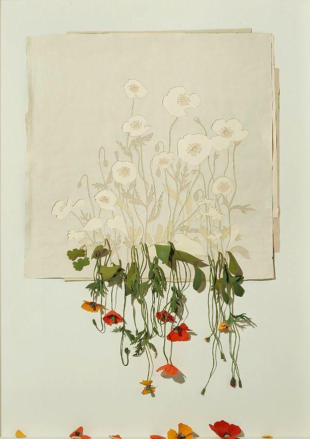 Peter Callesen, Papercut art