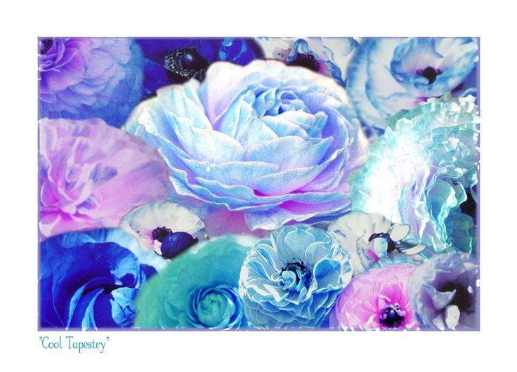 """""""Cool Tapestry"""" - Ranunculus Collage"""
