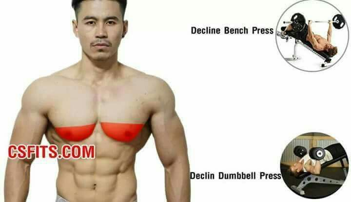 Building a manly chest (Fitness Routine Mens)