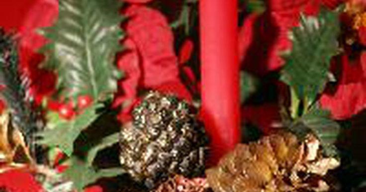 Las piñas de los pinos. Las piñas gustan tanto que se introducen en nuestros hogares en decoraciones florales, coronas de flores, artesanías, incluso como decoración perfumada. Incluso son comederos de aves de moda, se les pone mantequilla de maní y semillas y se cuelgan en los árboles. A pesar de que las piñas son los conos de los pinos en concreto, tienden a referirse ...
