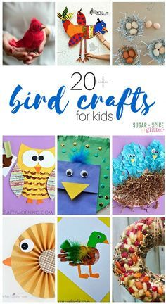 20 + Bird Crafts for Kids to make