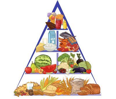 Potravinová pyramida: Tajemství zaručeného hubnutí