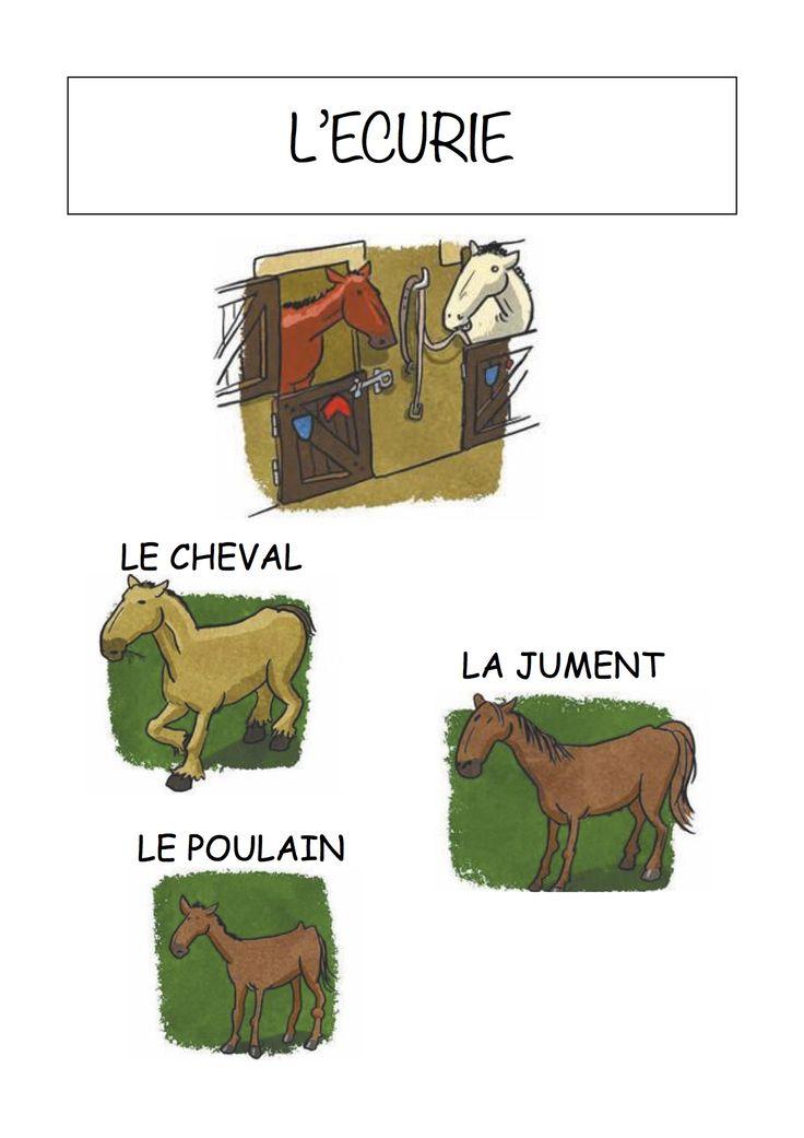 Vocabulaire de la ferme Imagier simple pour la maternelle : L'écurie