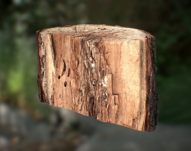 Wooden Stump OBJ by kanistra